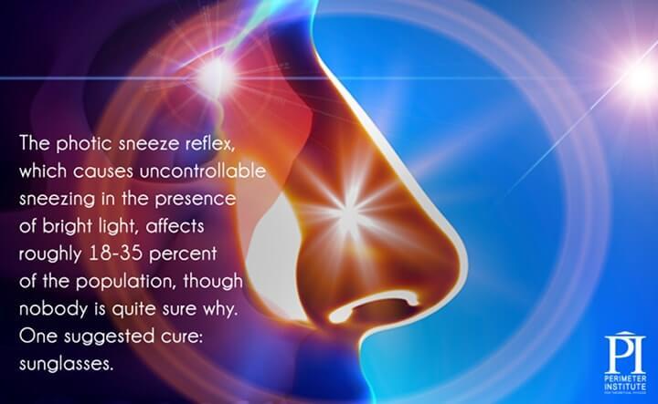 luz espirro de reflexo fótico